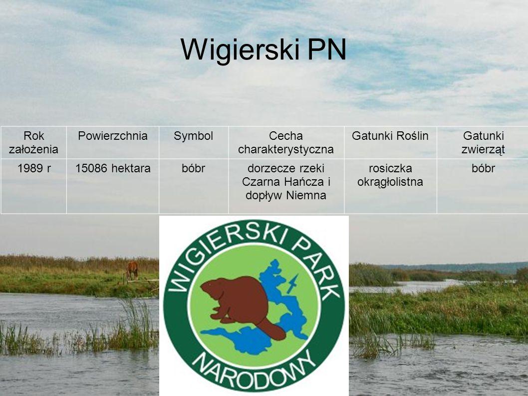Wigierski PN Rok założenia PowierzchniaSymbolCecha charakterystyczna Gatunki RoślinGatunki zwierząt 1989 r15086 hektarabóbrdorzecze rzeki Czarna Hańcz