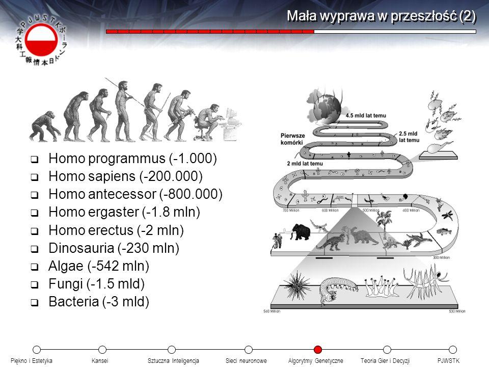 Piękno i EstetykaKanseiAlgorytmy GenetyczneSieci neuronowePJWSTKTeoria Gier i DecyzjiSztuczna Inteligencja Mała wyprawa w przeszłość (2) Homo programm