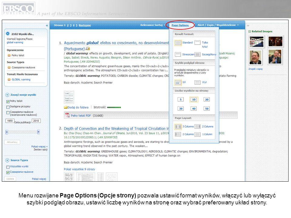 Menu rozwijane Page Options (Opcje strony) pozwala ustawić format wyników, włączyć lub wyłączyć szybki podgląd obrazu, ustawić liczbę wyników na stron