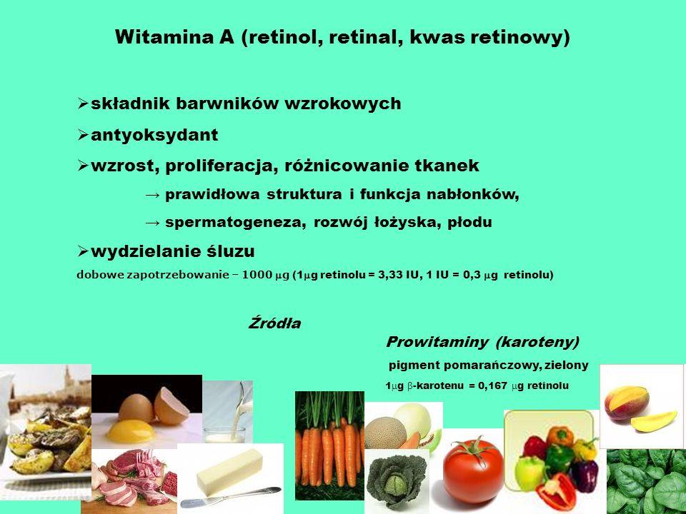 Witamina A (retinol, retinal, kwas retinowy) składnik barwników wzrokowych antyoksydant wzrost, proliferacja, różnicowanie tkanek prawidłowa struktura