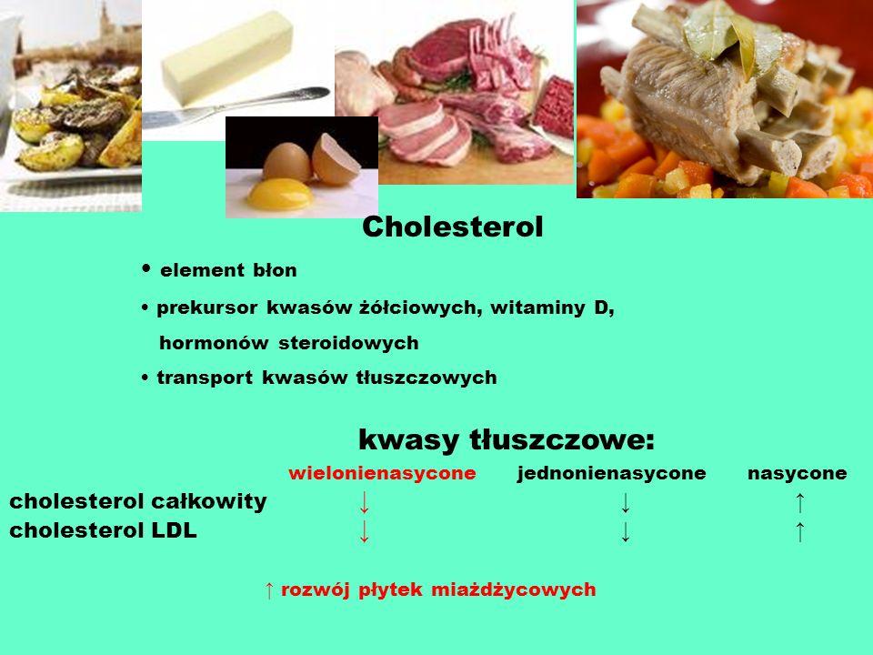 Cholesterol element błon prekursor kwasów żółciowych, witaminy D, hormonów steroidowych transport kwasów tłuszczowych kwasy tłuszczowe: wielonienasyco