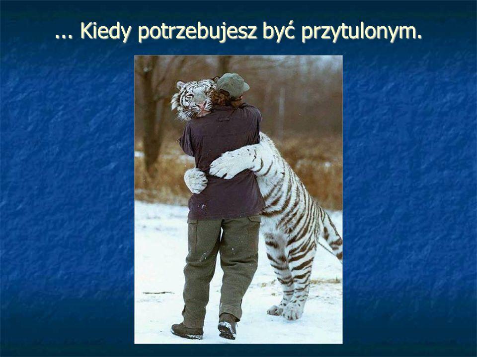 ... Kiedy potrzebujesz być przytulonym.
