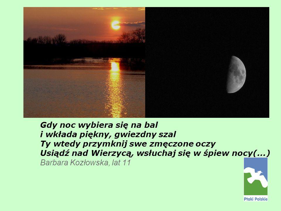 Gdy noc wybiera się na bal i wkłada piękny, gwiezdny szal Ty wtedy przymknij swe zmęczone oczy Usiądź nad Wierzycą, wsłuchaj się w śpiew nocy(...) Barbara Kozłowska, lat 11