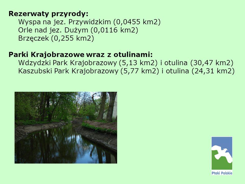 Rezerwaty przyrody: Wyspa na jez. Przywidzkim (0,0455 km2) Orle nad jez. Dużym (0,0116 km2) Brzęczek (0,255 km2) Parki Krajobrazowe wraz z otulinami: