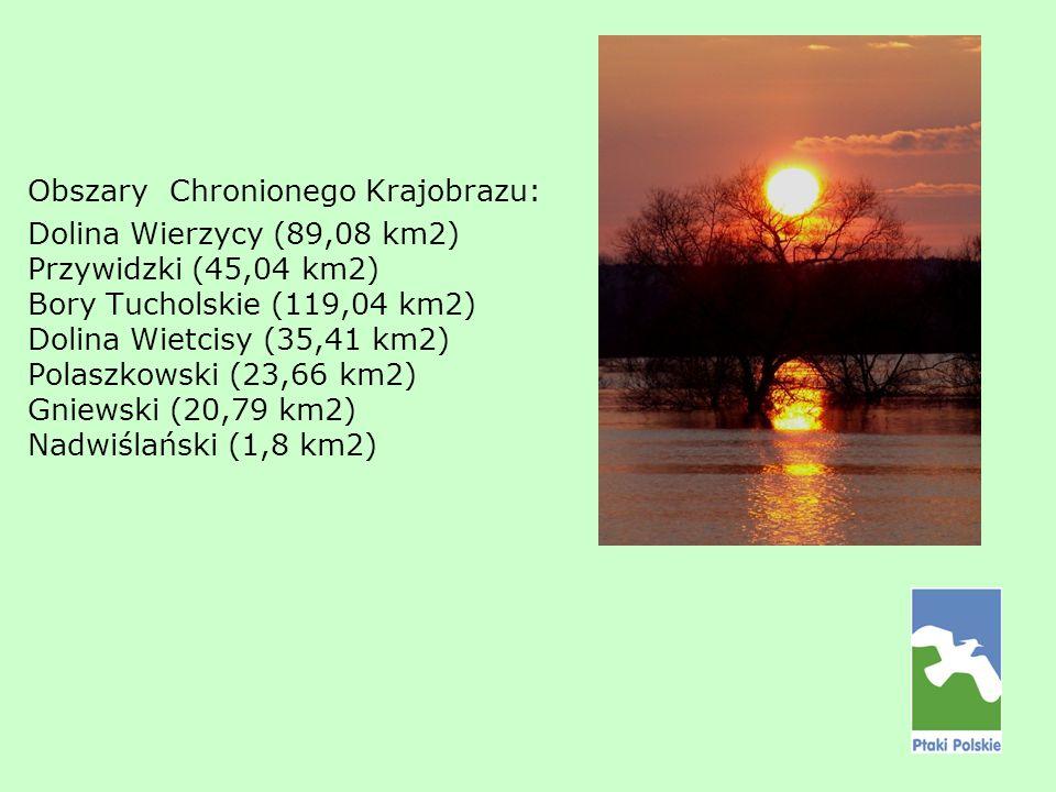 Obszary Chronionego Krajobrazu: Dolina Wierzycy (89,08 km2) Przywidzki (45,04 km2) Bory Tucholskie (119,04 km2) Dolina Wietcisy (35,41 km2) Polaszkows
