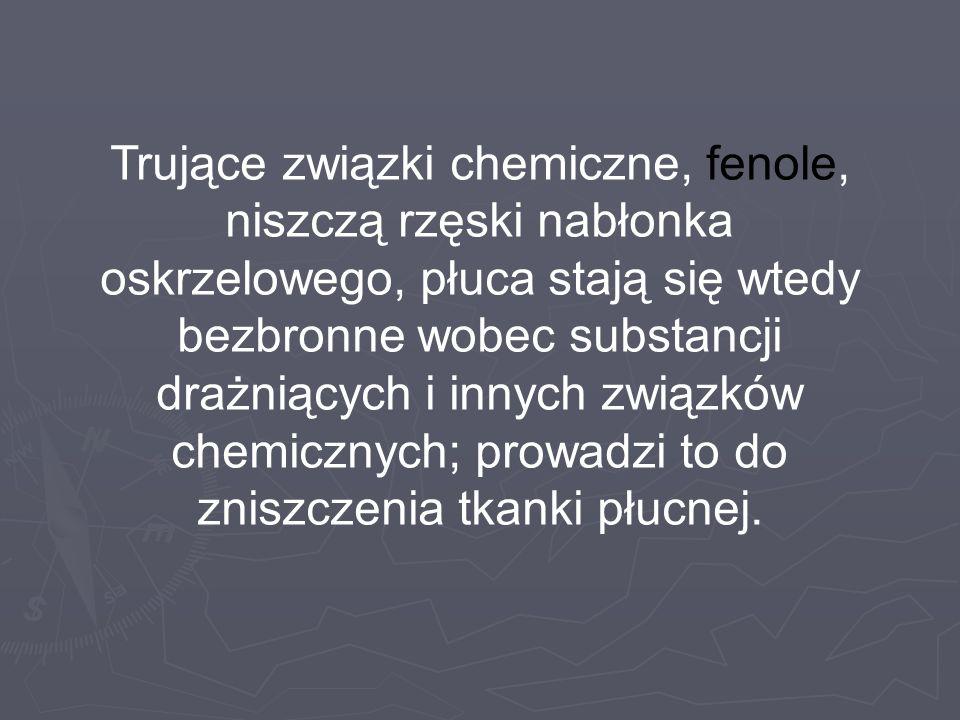 Trujące związki chemiczne, fenole, niszczą rzęski nabłonka oskrzelowego, płuca stają się wtedy bezbronne wobec substancji drażniących i innych związków chemicznych; prowadzi to do zniszczenia tkanki płucnej.