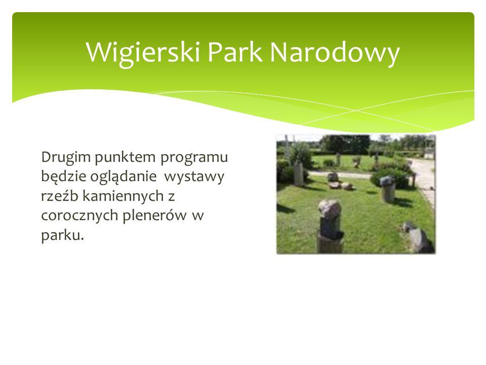 Wigierski Park Narodowy Drugim punktem programu będzie oglądanie wystawy rzeźb kamiennych z corocznych plenerów w parku.