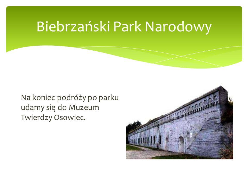 Biebrzański Park Narodowy Na koniec podróży po parku udamy się do Muzeum Twierdzy Osowiec.