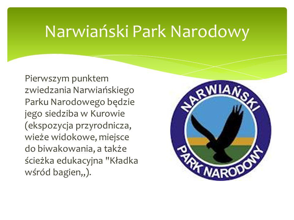 Pierwszym punktem zwiedzania Narwiańskiego Parku Narodowego będzie jego siedziba w Kurowie (ekspozycja przyrodnicza, wieże widokowe, miejsce do biwako