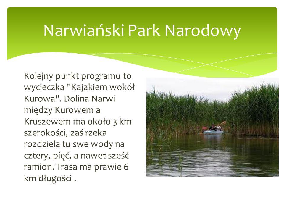 Narwiański Park Narodowy Kolejny punkt programu to wycieczka