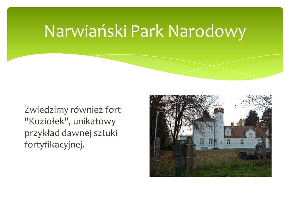 Narwiański Park Narodowy Zwiedzimy również fort