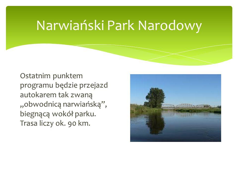 Narwiański Park Narodowy Ostatnim punktem programu będzie przejazd autokarem tak zwaną obwodnicą narwiańską, biegnącą wokół parku. Trasa liczy ok. 90