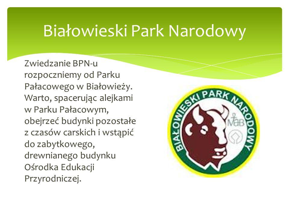 Zwiedzanie BPN-u rozpoczniemy od Parku Pałacowego w Białowieży. Warto, spacerując alejkami w Parku Pałacowym, obejrzeć budynki pozostałe z czasów cars