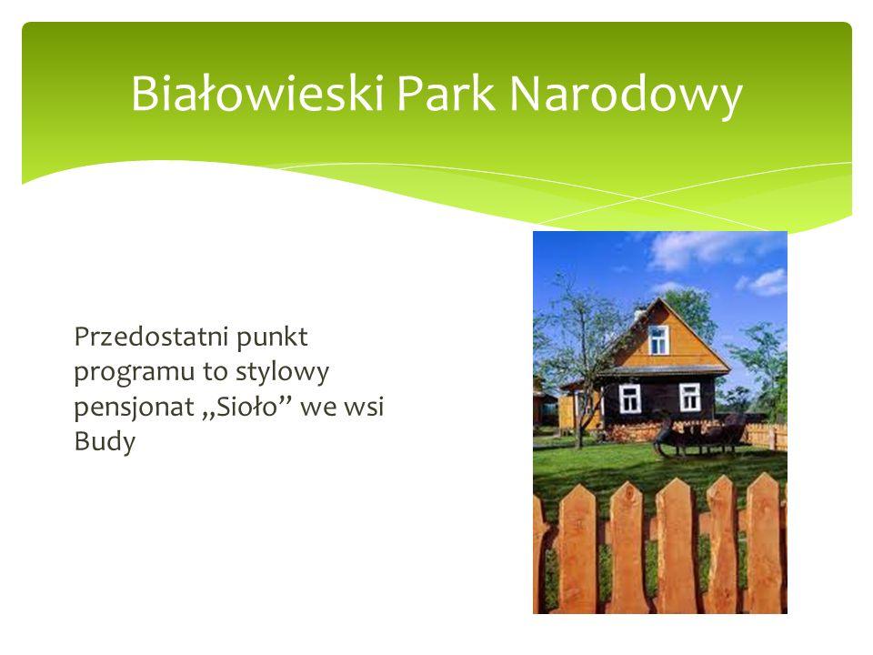 Białowieski Park Narodowy Przedostatni punkt programu to stylowy pensjonat Sioło we wsi Budy