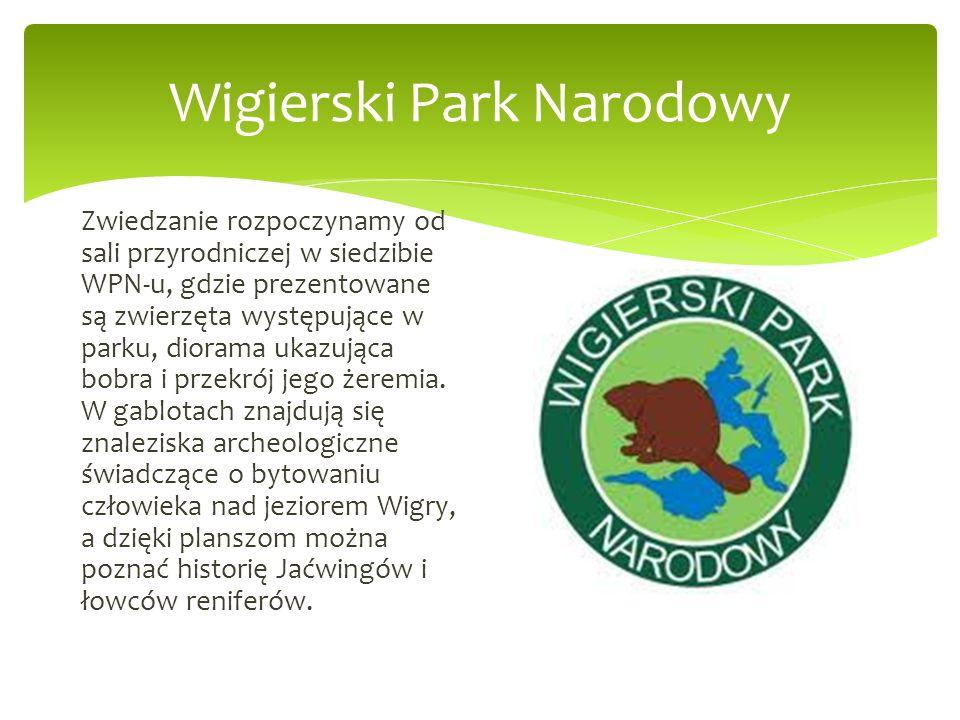 Zwiedzanie rozpoczynamy od sali przyrodniczej w siedzibie WPN-u, gdzie prezentowane są zwierzęta występujące w parku, diorama ukazująca bobra i przekr