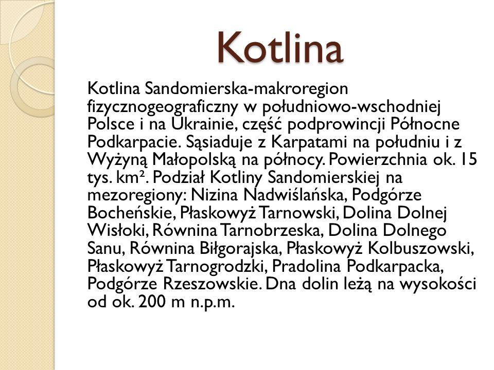 Kotlina Kotlina Sandomierska-makroregion fizycznogeograficzny w południowo-wschodniej Polsce i na Ukrainie, część podprowincji Północne Podkarpacie. S