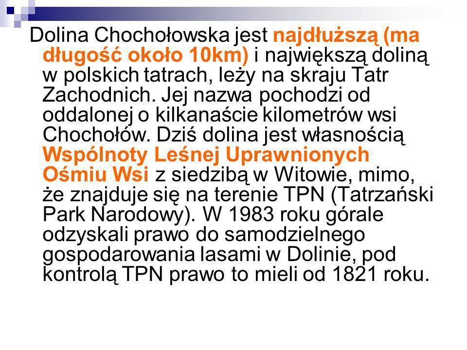 Dolina Chochołowska jest najdłuższą (ma długość około 10km) i największą doliną w polskich tatrach, leży na skraju Tatr Zachodnich. Jej nazwa pochodzi