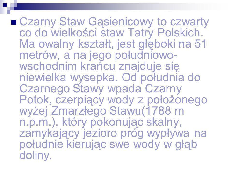 Czarny Staw Gąsienicowy to czwarty co do wielkości staw Tatry Polskich. Ma owalny kształt, jest głęboki na 51 metrów, a na jego południowo- wschodnim