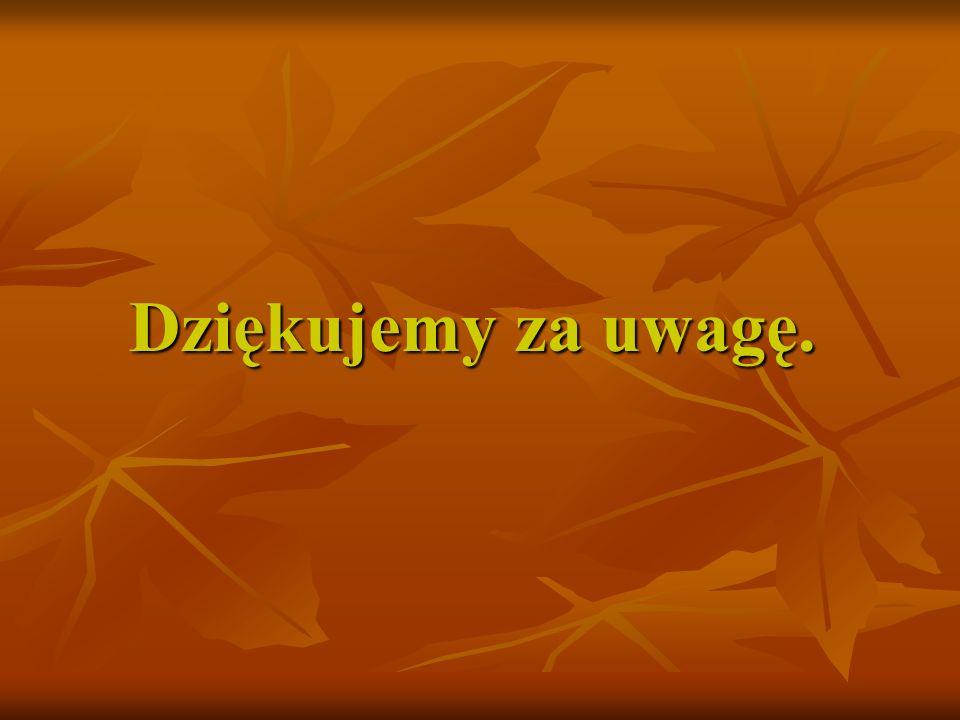 Adresy stron internetowych www.iPon.plwww.iPon.pl - Internetowy portal osób niepełnosprawnych www.iPon.pl www.idn.org.plwww.idn.org.pl - Internet dla