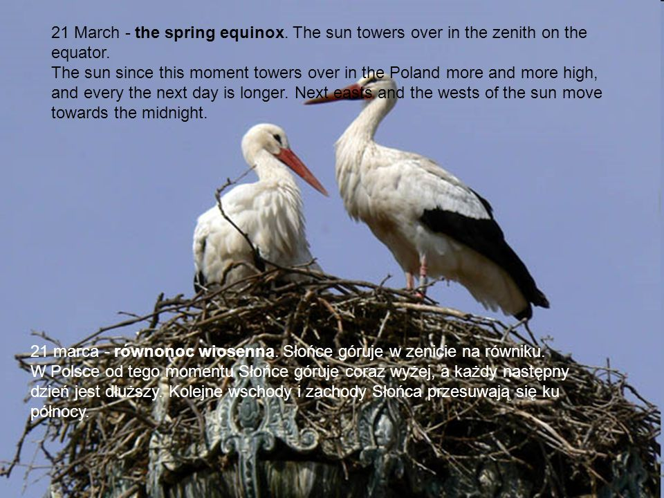 21 March - the spring equinox. The sun towers over in the zenith on the equator. The sun since this moment towers over in the Poland more and more hig