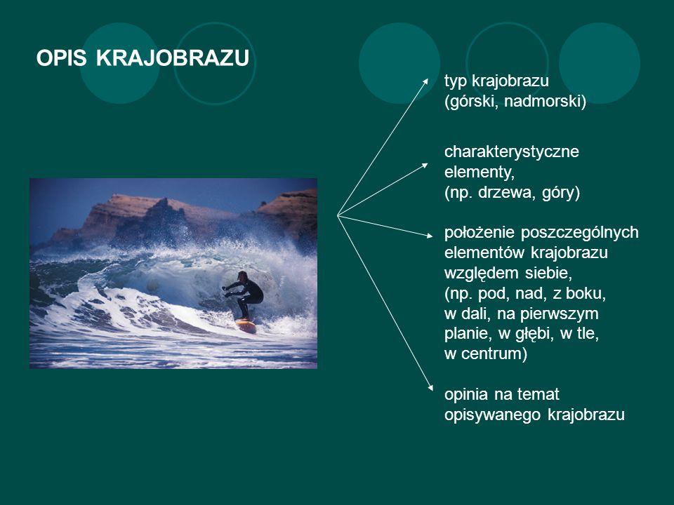 OPIS KRAJOBRAZU typ krajobrazu (górski, nadmorski) charakterystyczne elementy, (np.