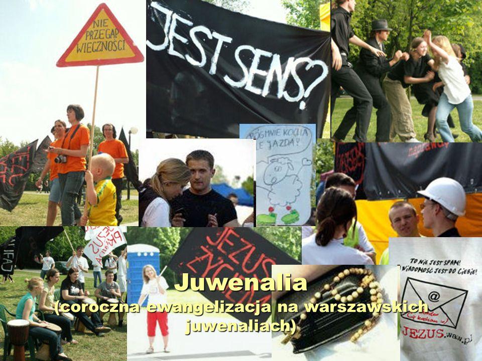 Juwenalia 2011 (dział wizualny)