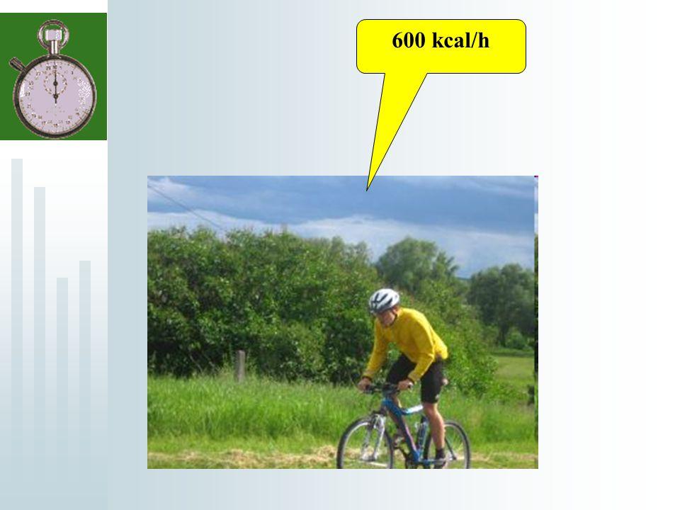 600 kcal/h