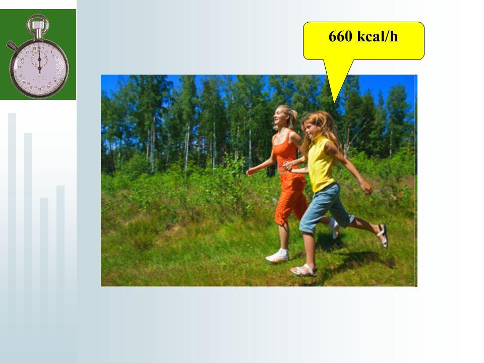 660 kcal/h