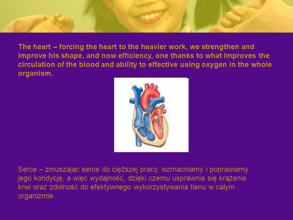 Serce – zmuszając serce do cięższej pracy, wzmacniamy i poprawiamy jego kondycję, a więc wydajność, dzięki czemu usprawnia się krążenie krwi oraz zdolność do efektywnego wykorzystywania tlenu w całym organizmie.