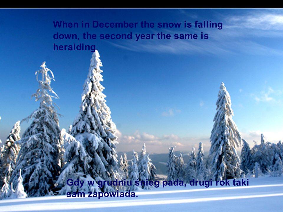 Gdy w grudniu śnieg pada, drugi rok taki sam zapowiada. When in December the snow is falling down, the second year the same is heralding.