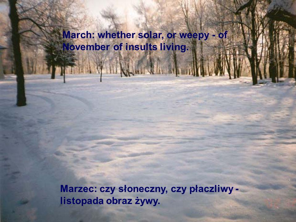 Marzec: czy słoneczny, czy płaczliwy - listopada obraz żywy. March: whether solar, or weepy - of November of insults living.