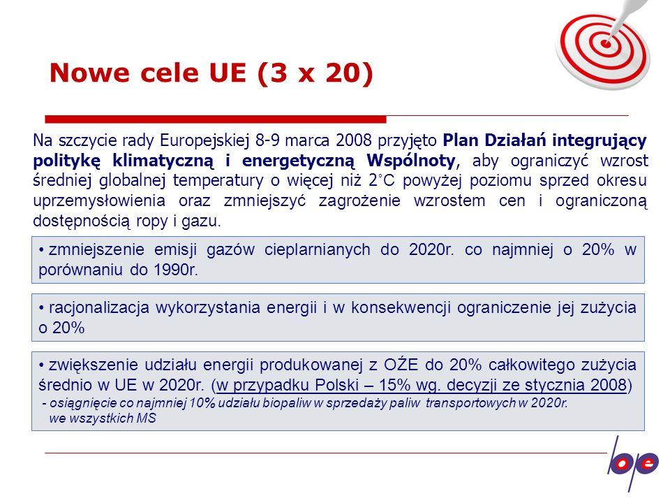 Produkcja energii elektrycznej z OZE w 2006 roku - struktura