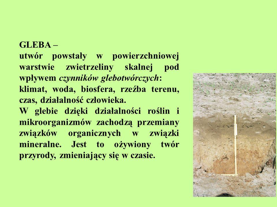 Gleba - układ trójfazowy: faza stała - cząstki mineralne, organiczne i organiczno-mineralne w różnym stopniu rozdrobnienia faza ciekła - woda, w której są rozpuszczone związki mineralne i organiczne, tzw.