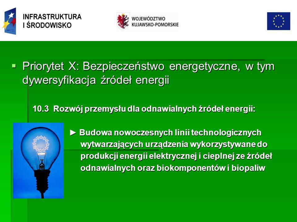 Priorytet X: Bezpieczeństwo energetyczne, w tym dywersyfikacja źródeł energii Priorytet X: Bezpieczeństwo energetyczne, w tym dywersyfikacja źródeł en