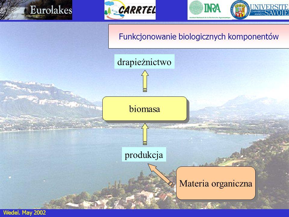 Wedel. May 2002 biomasa Materia organiczna drapieżnictwo produkcja Funkcjonowanie biologicznych komponentów
