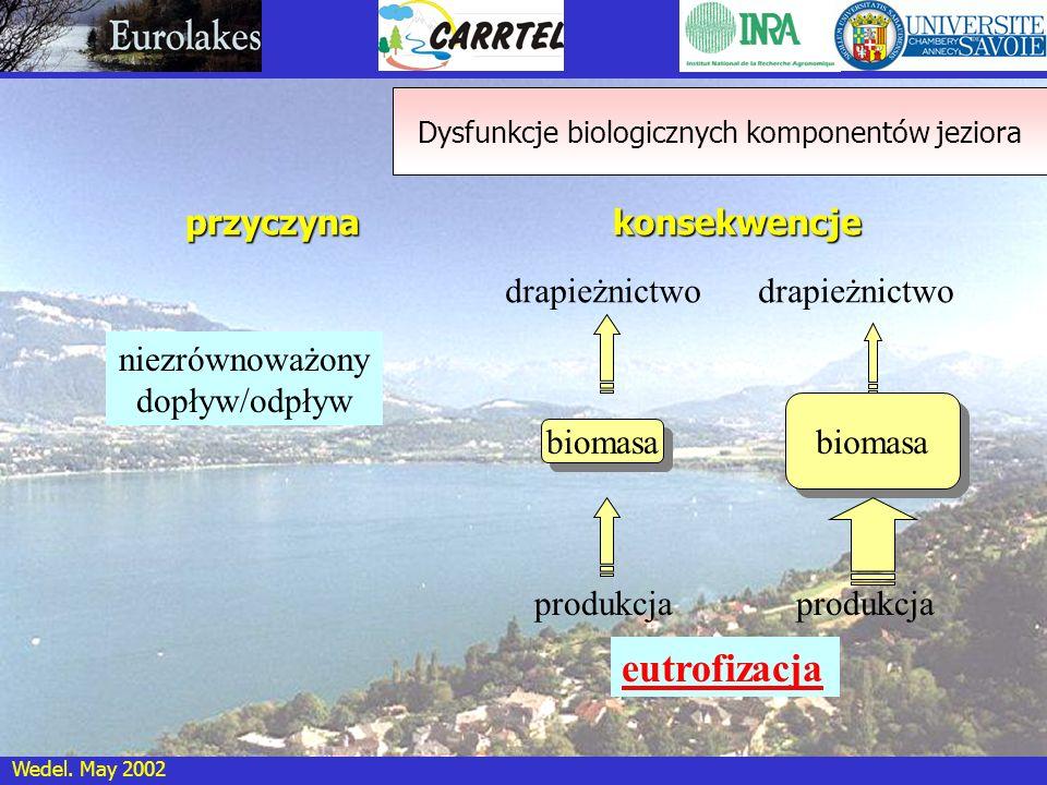 Wedel. May 2002 Dysfunkcje biologicznych komponentów jeziora biomasa produkcja drapieżnictwo przyczyna niezrównoważony dopływ/odpływ konsekwencje biom