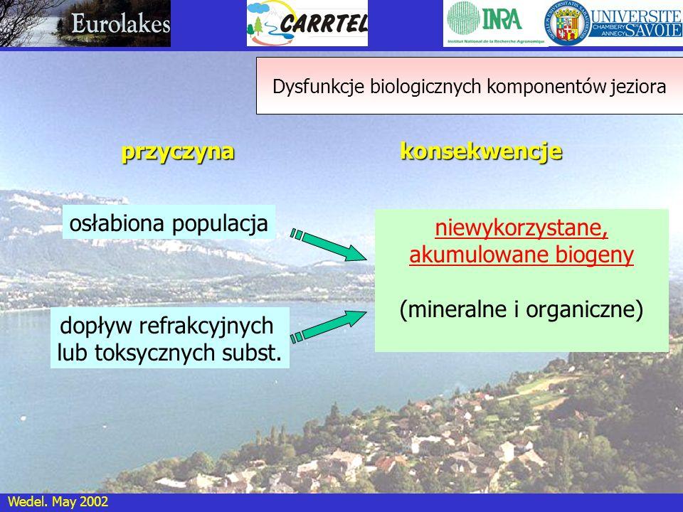 Wedel. May 2002 przyczyna osłabiona populacja konsekwencje dopływ refrakcyjnych lub toksycznych subst. niewykorzystane, akumulowane biogeny (mineralne