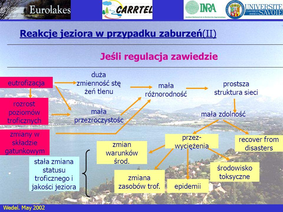 Wedel. May 2002 Reakcje jeziora w przypadku zaburzeń(II) Jeśli regulacja zawiedzie duża zmienność stę żeń tlenu mała przezroczystośc mała różnorodność