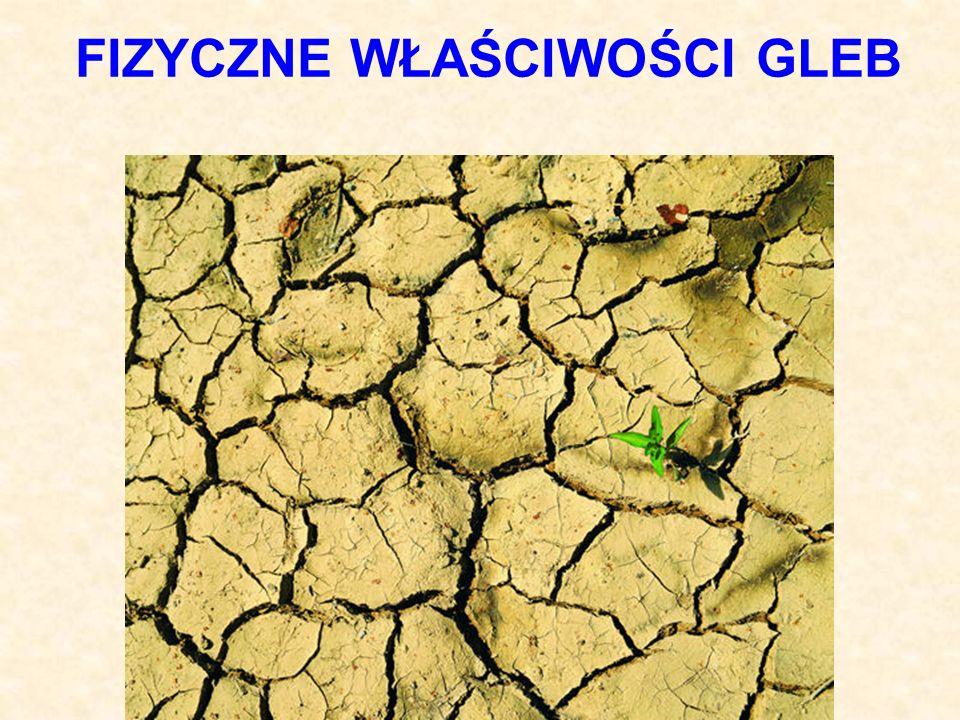 PĘCZNIENIE I KURCZLIWOŚĆ GLEBY przykładowe wartości Rodzaj utworuPęcznienie P [%] Pył ilasty Glina lekka Glina ciężka Ił Bentonit 16 5 25 32 190