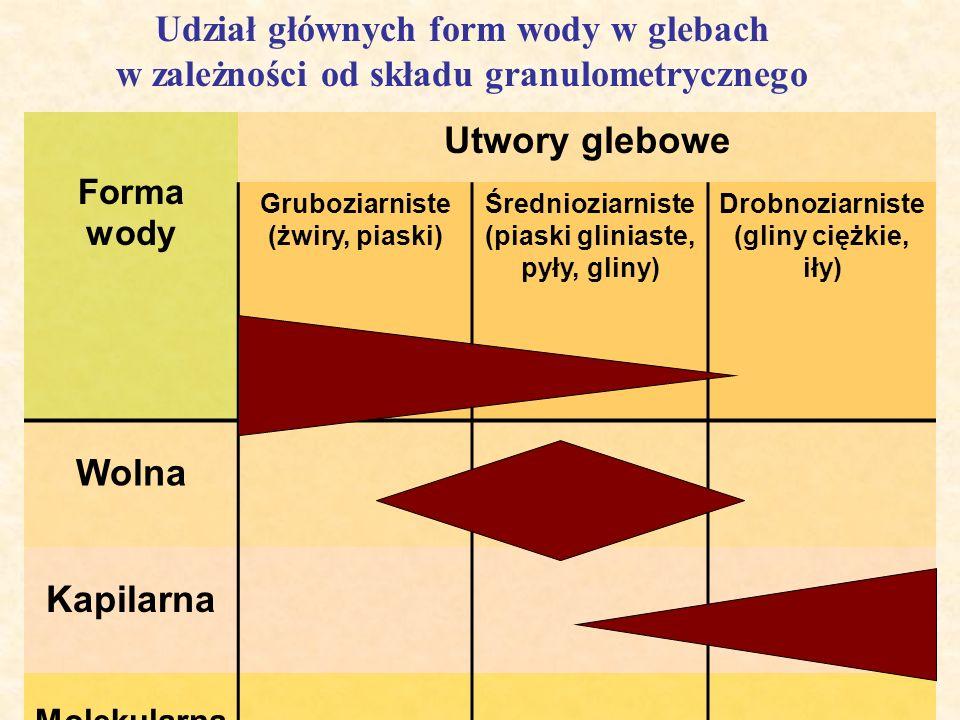 Udział głównych form wody w glebach w zależności od składu granulometrycznego Forma wody Utwory glebowe Gruboziarniste (żwiry, piaski) Średnioziarnist