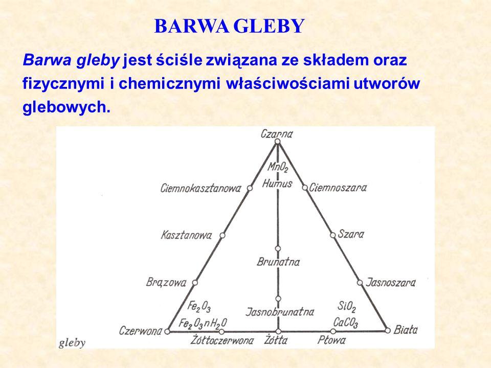 BARWA GLEBY Barwa gleby jest ściśle związana ze składem oraz fizycznymi i chemicznymi właściwościami utworów glebowych.