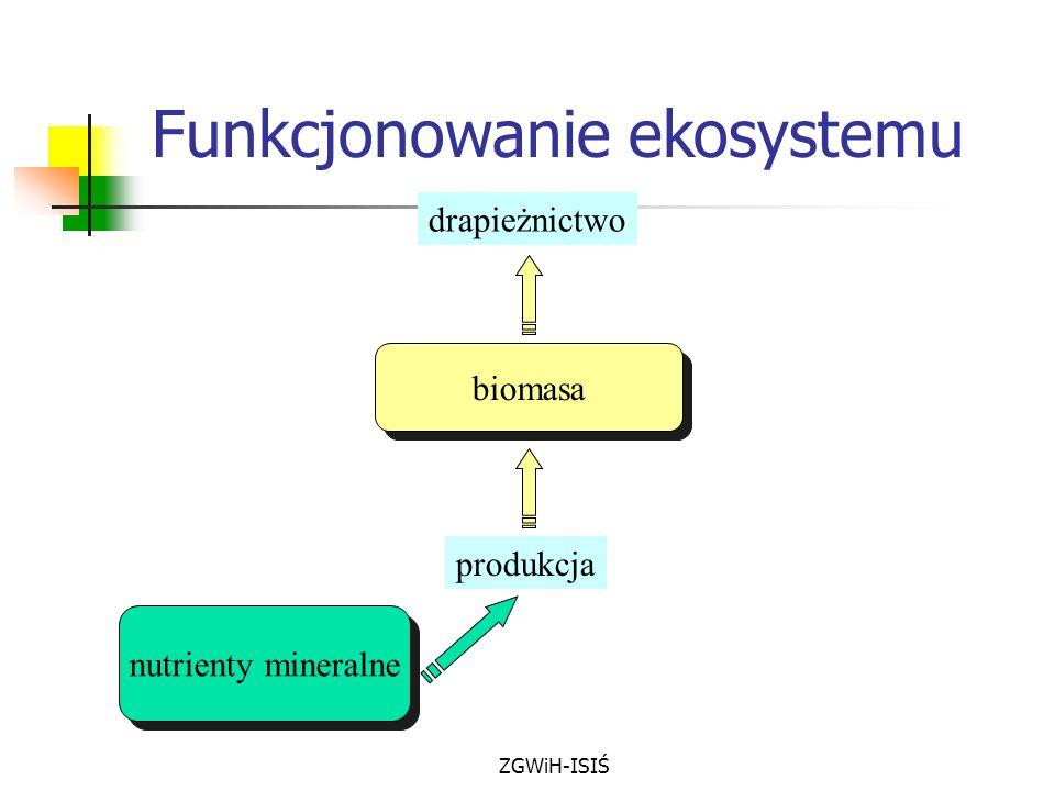 ZGWiH-ISIŚ biomasa drapieżnictwo produkcja nutrienty mineralne Funkcjonowanie ekosystemu