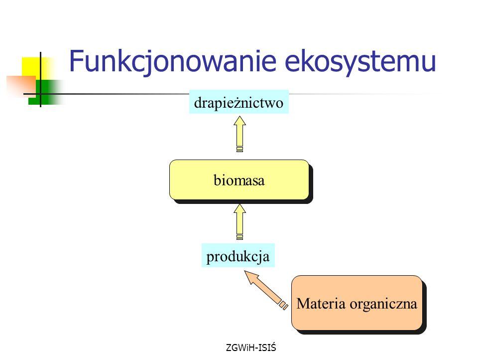 ZGWiH-ISIŚ biomasa Materia organiczna drapieżnictwo produkcja Funkcjonowanie ekosystemu