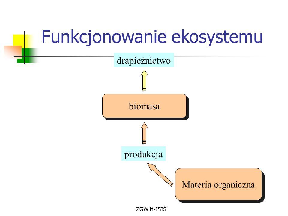 ZGWiH-ISIŚ biomasa drapieżnictwo produkcja Materia organiczna Funkcjonowanie ekosystemu