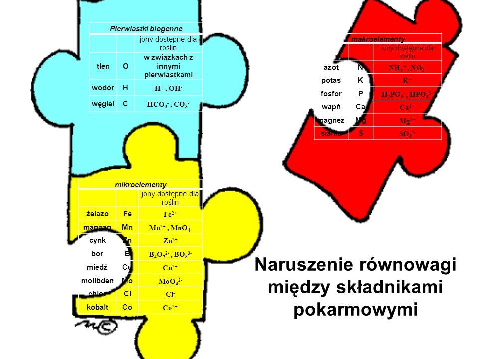 Naruszenie równowagi między składnikami pokarmowymi mikroelementy jony dostępne dla roślin żelazoFe Fe 2+ manganMn Mn 2+, MnO 4 - cynkZn Zn 2+ borB B