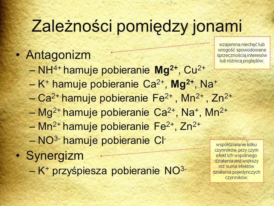 Zależności pomiędzy jonami Antagonizm –NH 4+ hamuje pobieranie Mg 2+, Cu 2+ –K + hamuje pobieranie Ca 2+, Mg 2+, Na + –Ca 2+ hamuje pobieranie Fe 2+,