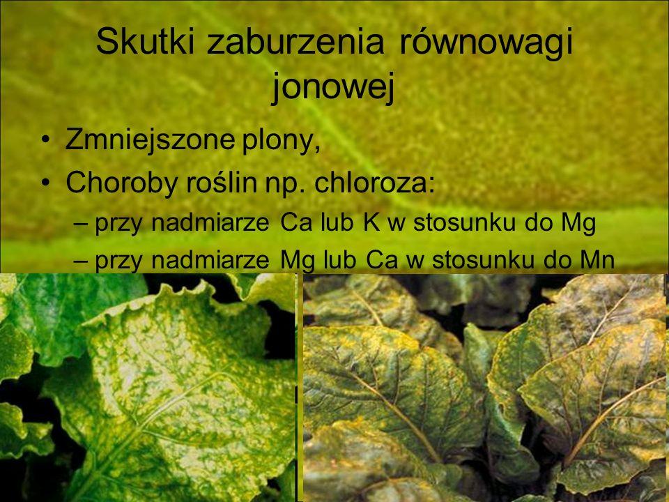 Skutki zaburzenia równowagi jonowej Zmniejszone plony, Choroby roślin np. chloroza: –przy nadmiarze Ca lub K w stosunku do Mg –przy nadmiarze Mg lub C