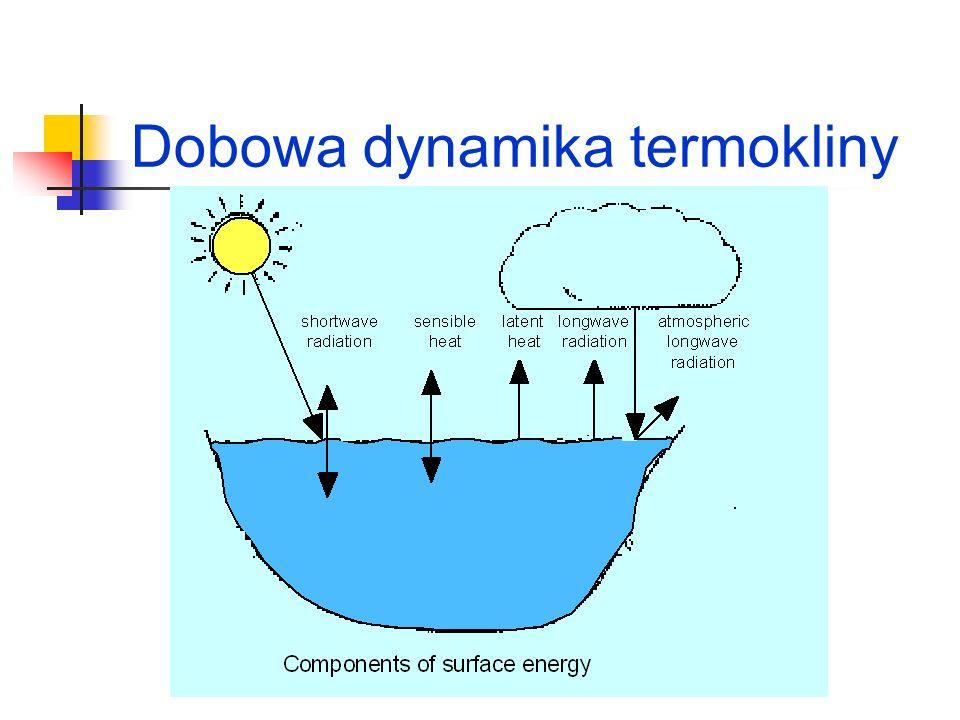 Klasyfikacja troficzna jezior oligotroficzne mezotroficzne eutroficzne dystroficzne