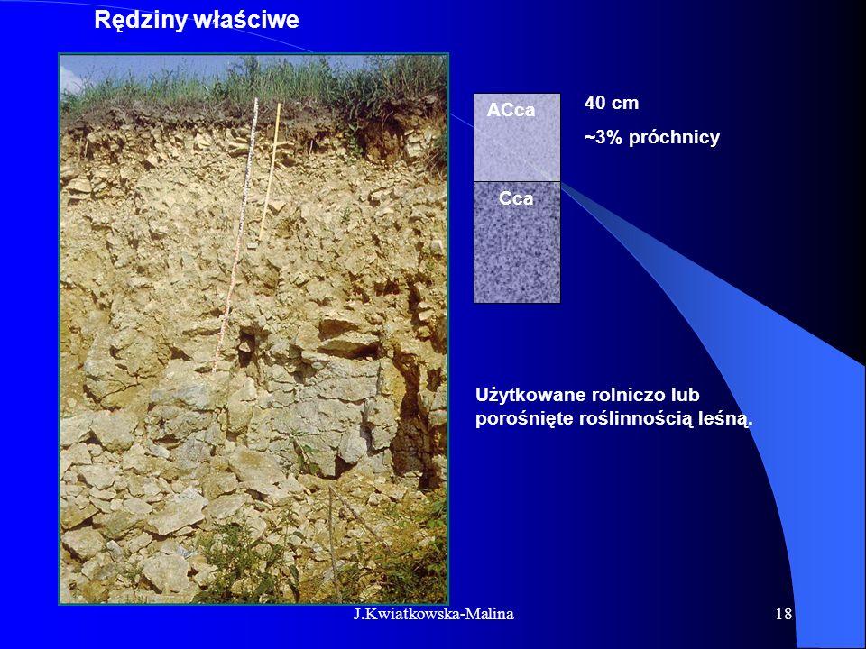 J.Kwiatkowska-Malina18 Rędziny właściwe ACca Cca Użytkowane rolniczo lub porośnięte roślinnością leśną. 40 cm ~3% próchnicy