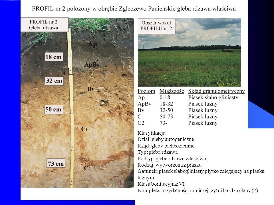 J.Kwiatkowska-Malina24 Klasyfikacja Dział: gleby autogeniczne Rząd: gleby bielicoziemne Typ: gleba rdzawa Podtyp: gleba rdzawa właściwa Rodzaj: wytwor